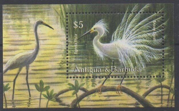 Timbres sur les oiseaux (échassiers) d'Antigua et Barbuda