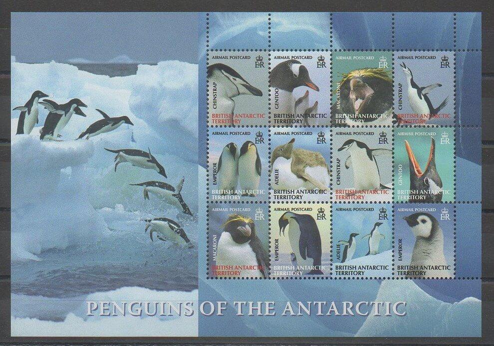 Timbre territoire antarctique Cétacées
