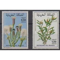 Maroc - 1980 - No 868/869 - Fleurs