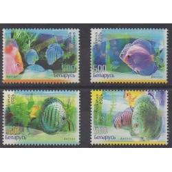 Belarus - 2006 - Nb 576/579 - Sea life