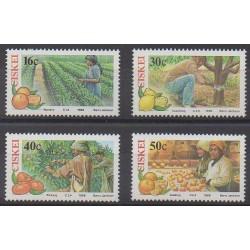Afrique du Sud - Ciskey - 1988 - No 141/144 - Fruits ou légumes