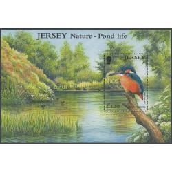 Jersey - 2001 - No BF 35 - Oiseaux