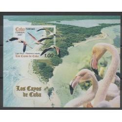 Cuba - 2007 - No BF226 - Oiseaux
