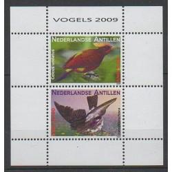 Antilles néerlandaises - 2009 - No BF75 - Oiseaux