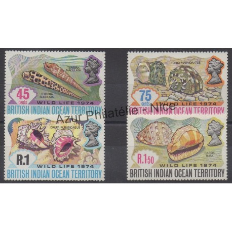 British Indian Ocean Territory - 1974 - Nb 59/62 - Shells