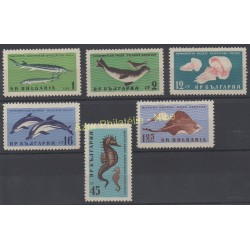 Bulgaria - 1961 - Nb 1080/1085 - Sea life