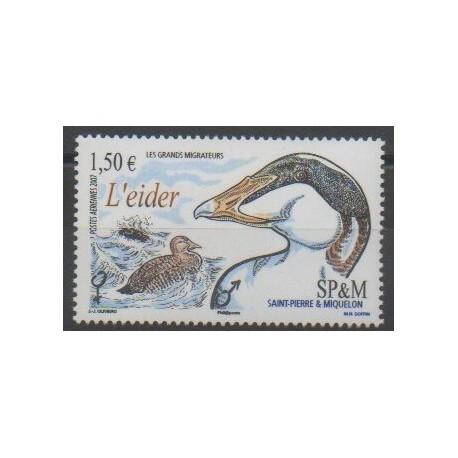 Saint-Pierre et Miquelon - Poste aérienne - 2007 - No PA87 - Oiseaux
