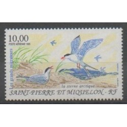 Saint-Pierre et Miquelon - Poste aérienne - 1995 - No PA74 - Oiseaux