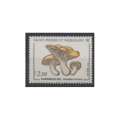 Saint-Pierre et Miquelon - 1987 - No 475 - Champignons
