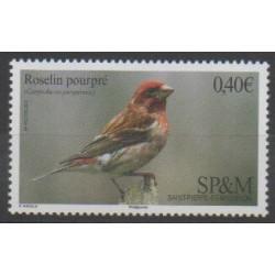 Saint-Pierre et Miquelon - 2016 - No 1148 - Oiseaux