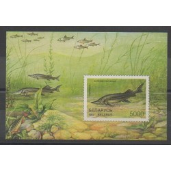 Belarus - 1997 - Nb BF17 - Sea animals