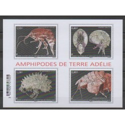 French Southern and Antarctic Lands - Blocks and sheets - 2017 - Nb F807 - Sea animals