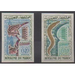 Morocco - 1962 - Nb 448/449ND - Sea animals