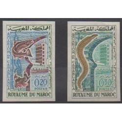 Maroc - 1962 - No 448/449ND - Animaux marins