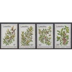 Lesotho - 1979 - No 368/371 - Fleurs - Fruits ou légumes