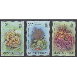 Montserrat - 1979 - No 411/413 - Animaux marins