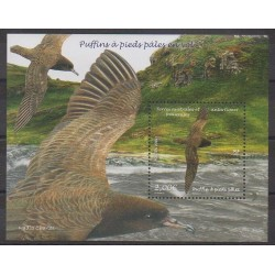 French Southern and Antarctic Lands - Blocks and sheets - 2019 - Nb F897 - Birds