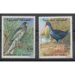 Maroc - 1976- No 777/778 - Oiseaux