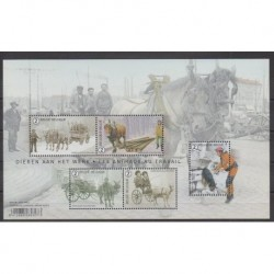 Belgium - 2019 - Nb F4817 - Horses - Animals