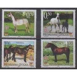 Bosnia and Herzegovina Serbian Republic - 2003 - Nb 255/258 - Horses