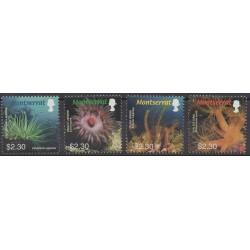 Montserrat - 2006 - No 1202/1205 - Vie marine