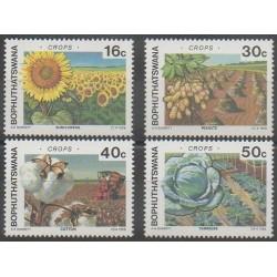 Afrique du Sud - Bophuthatswana - 1988 - No 206/209 - Fruits ou légumes