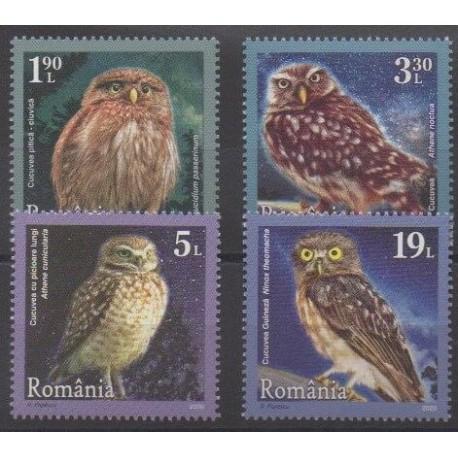 Romania - 2020 - Hiboux - Birds