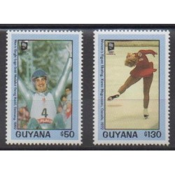 Guyana - 1993 - Nb 2989/2990 - Winter Olympics