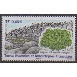 French Southern and Antarctic Territories - Post - 2013 - Nb 648 - Flora