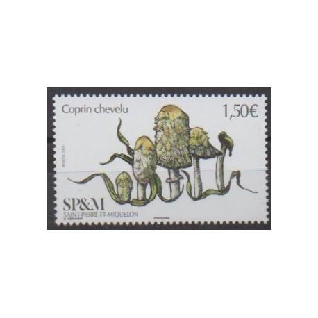 Saint-Pierre and Miquelon - 2020 - Nb 1247 - Mushrooms