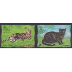 Sierra Leone - 2000 - No 3169/3170 - Chats