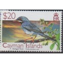 Cayman (Islandes)